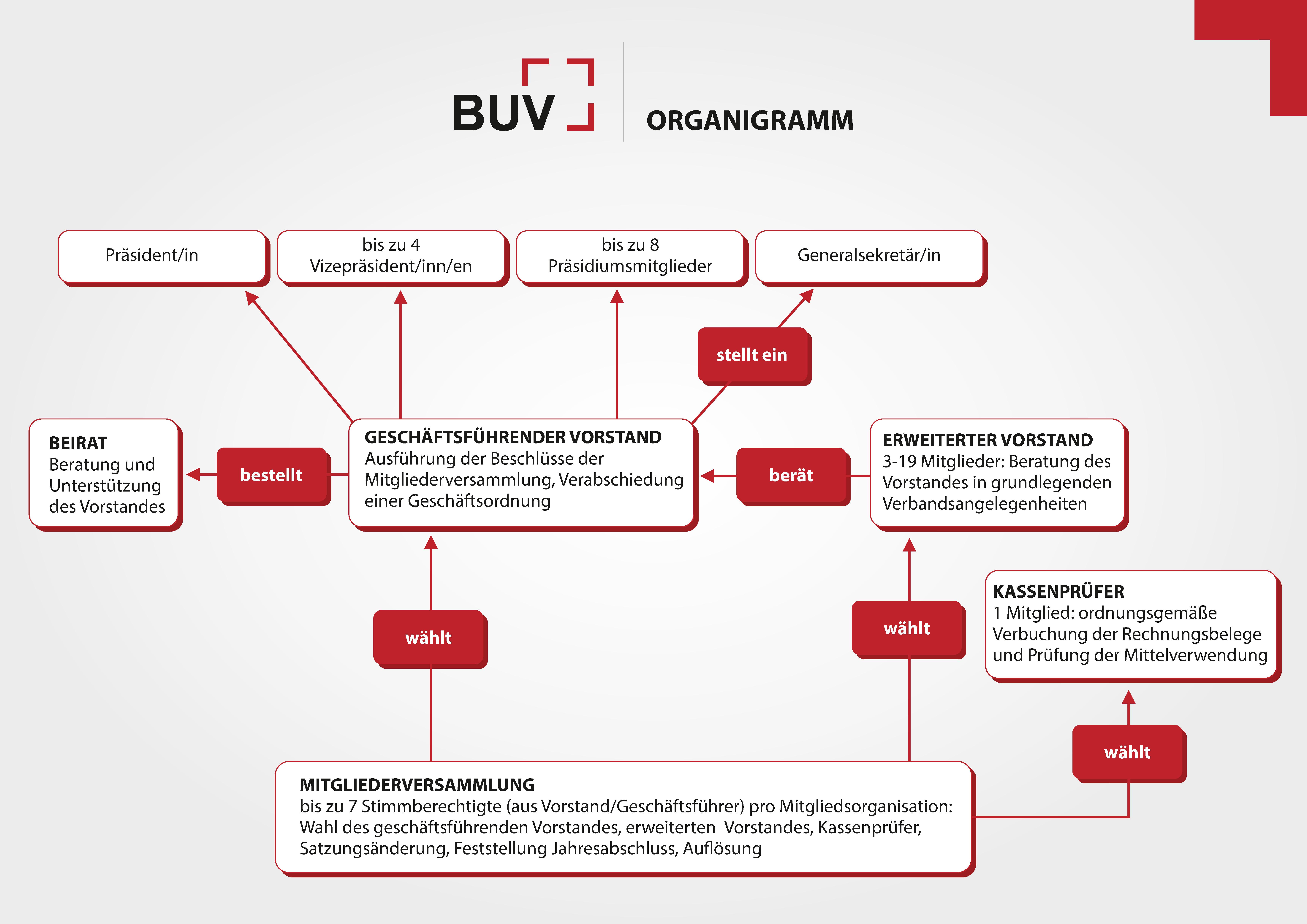 BUV_organigramm
